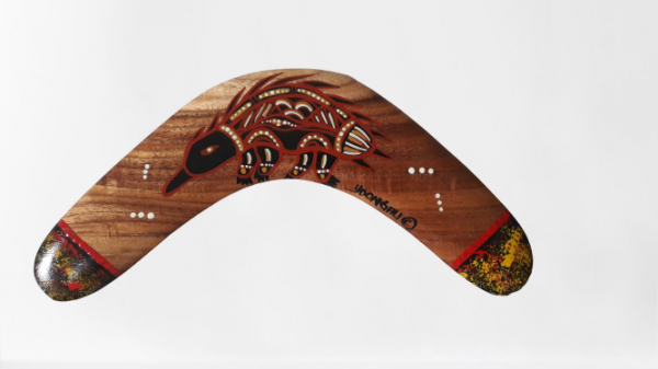 Medium Decorative Boomerang